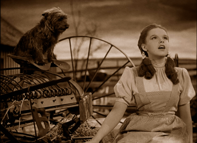 6 1 10 Crazy Behind-The-Scenes Stories From The Wizard Of Oz.