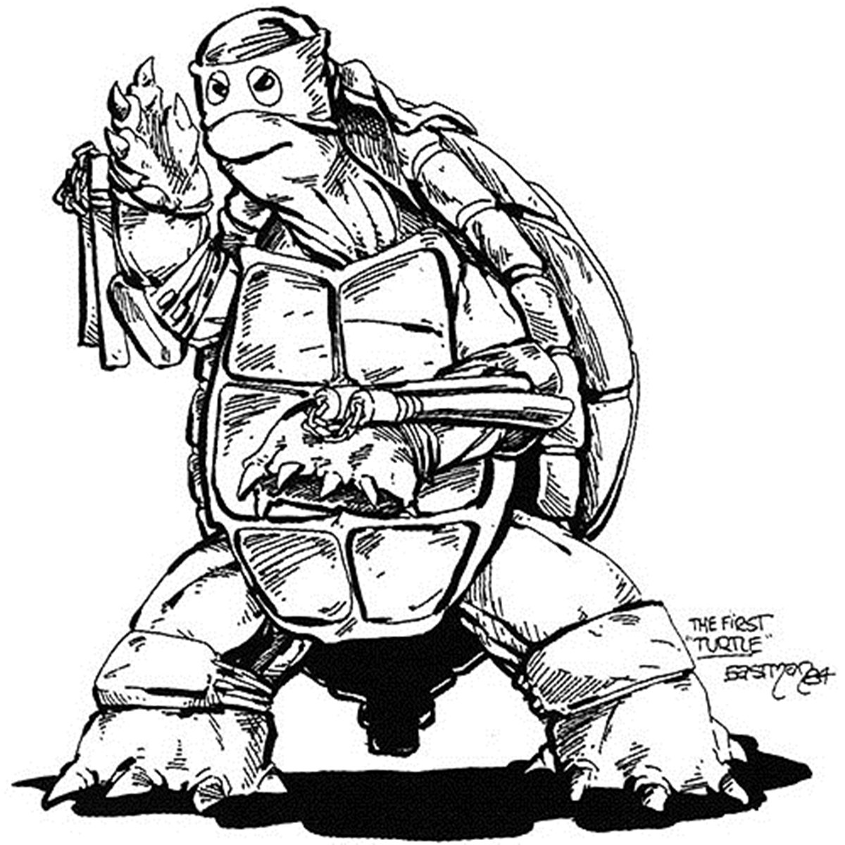 1 14 12 Things You Probably Didn't Know About The Teenage Mutant Ninja Turtles