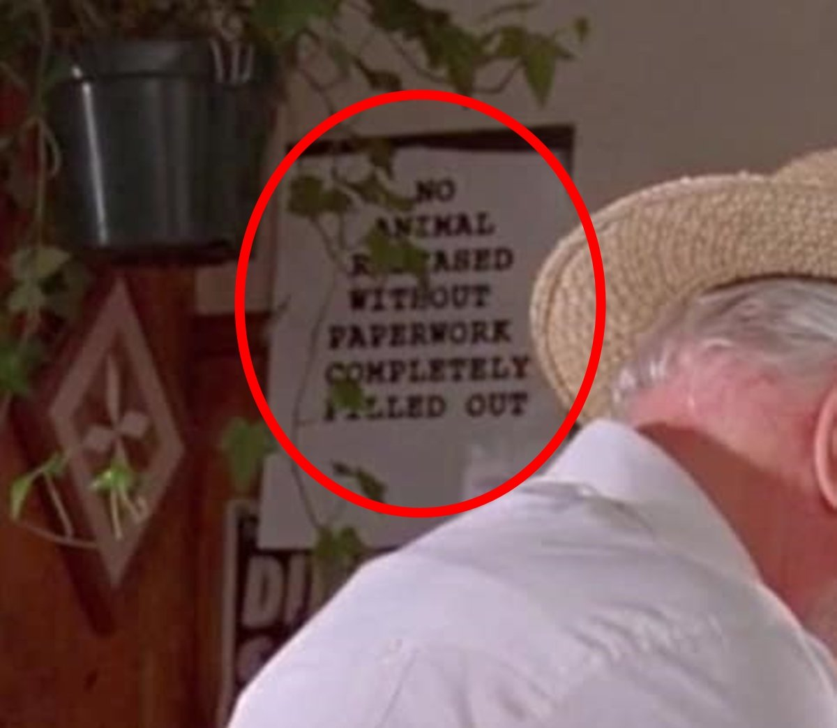 SIGN 25 Things You Probably Missed In Jurassic Park