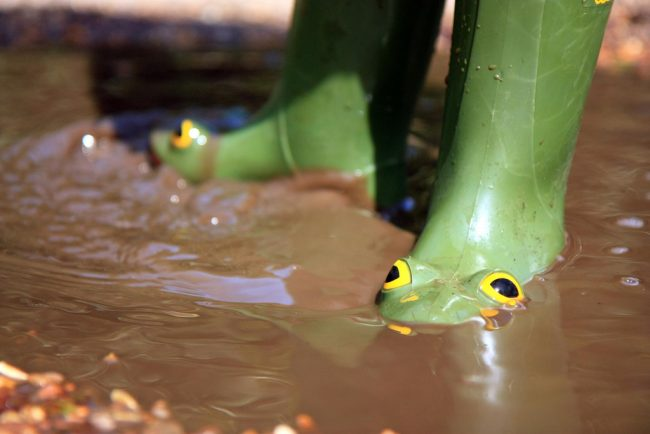 frog wellies 12 Images That Will Take You Right Back To Your Primary School Days