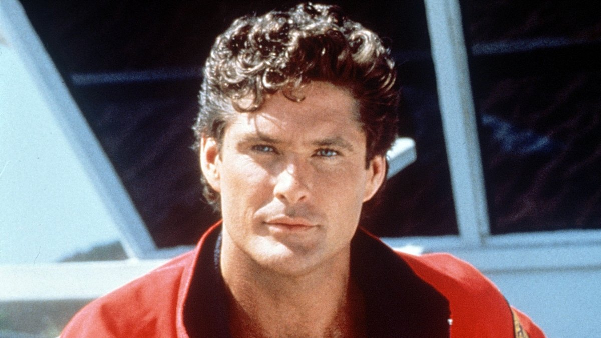 11 11 14 Interesting Facts About David 'The Hoff' Hasselhoff