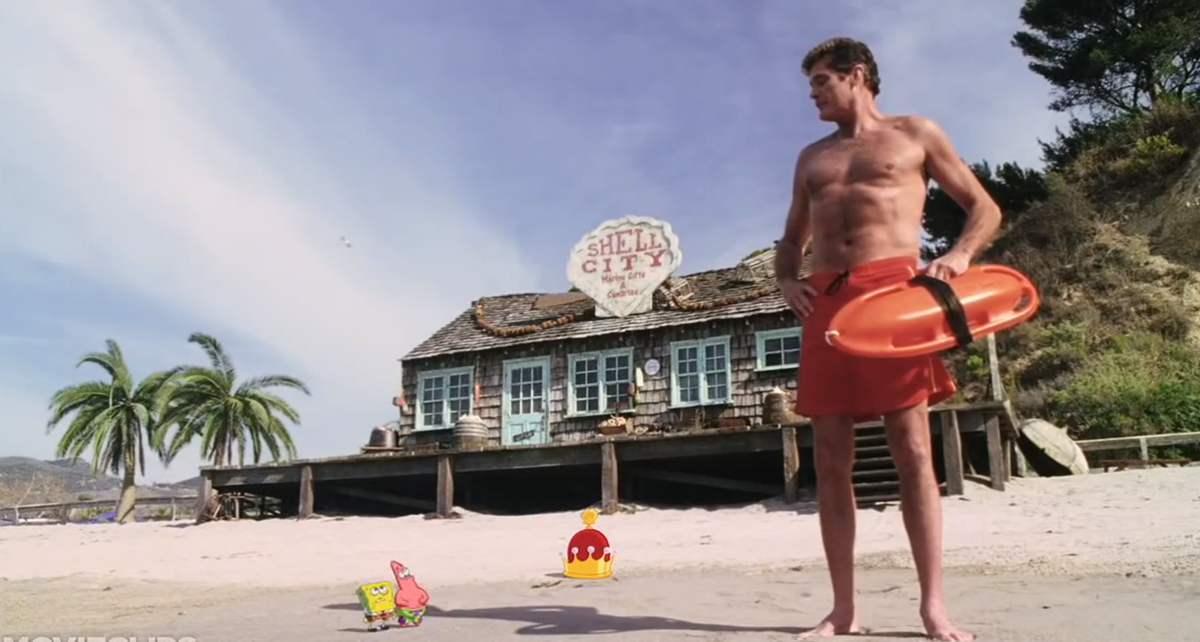 12 14 Interesting Facts About David 'The Hoff' Hasselhoff