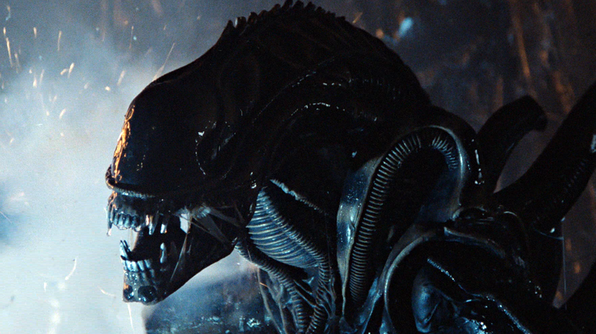 4 20 Things You May Have Missed In Aliens