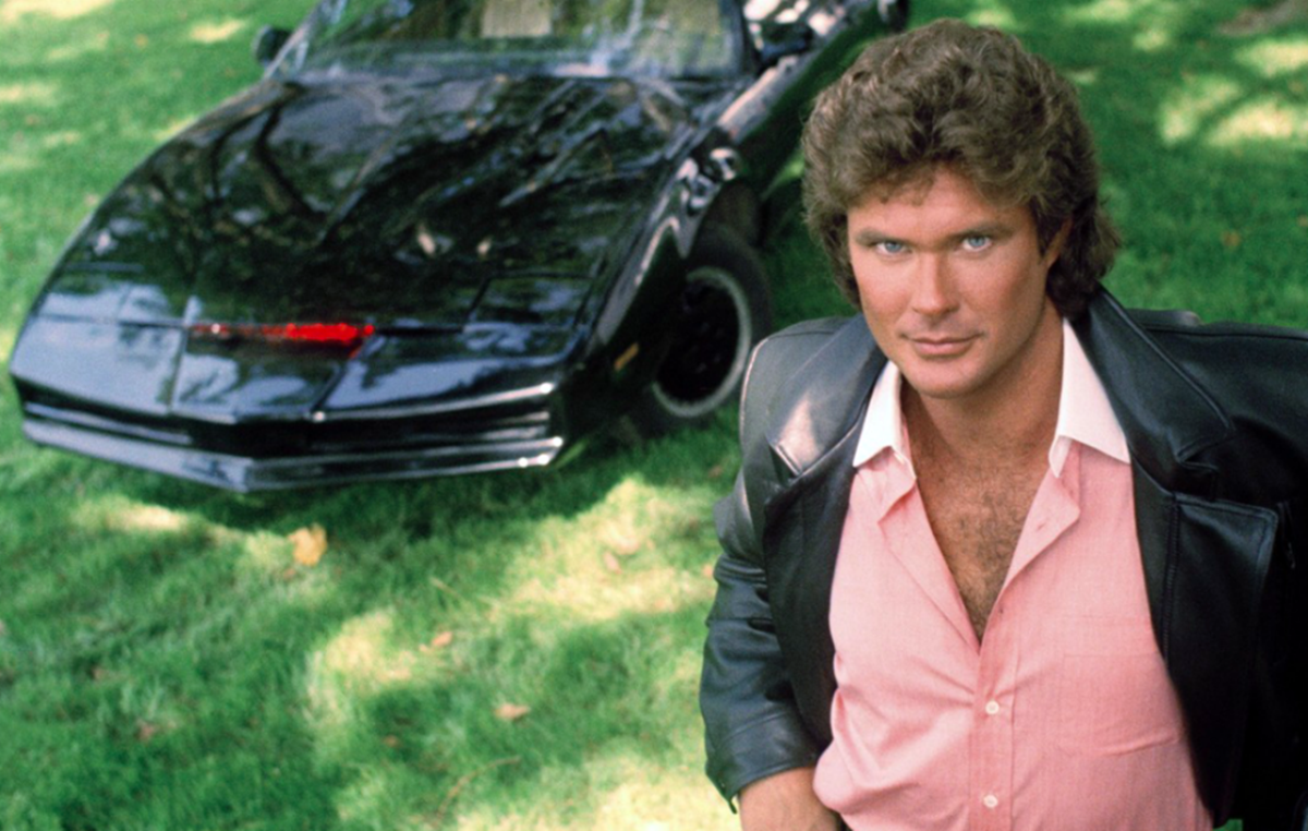7 3 14 Interesting Facts About David 'The Hoff' Hasselhoff