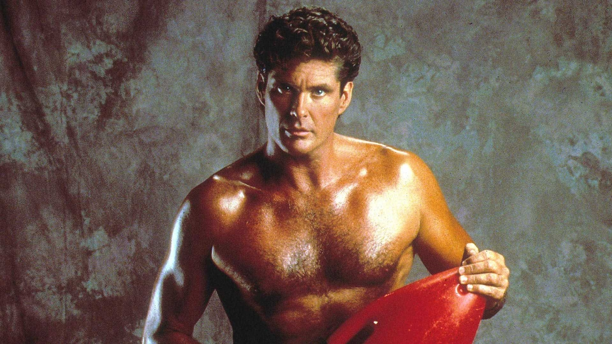 9 15 14 Interesting Facts About David 'The Hoff' Hasselhoff