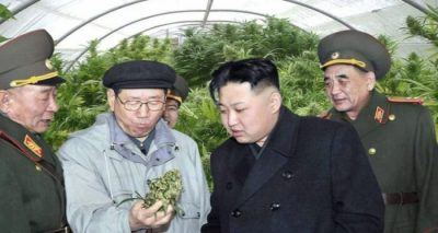 17. 2 25 Things You Didn't Know About North Korea