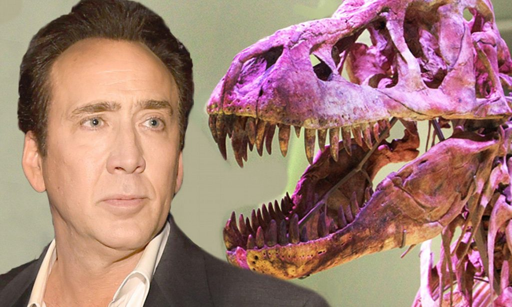 2F8F507D00000578 0 image a 5 1450762142541 20 Fascinating Facts You Didn't Know About Nicolas Cage
