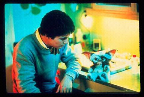FB IMG 15265762442294352 15 Incredible Facts About Gremlins