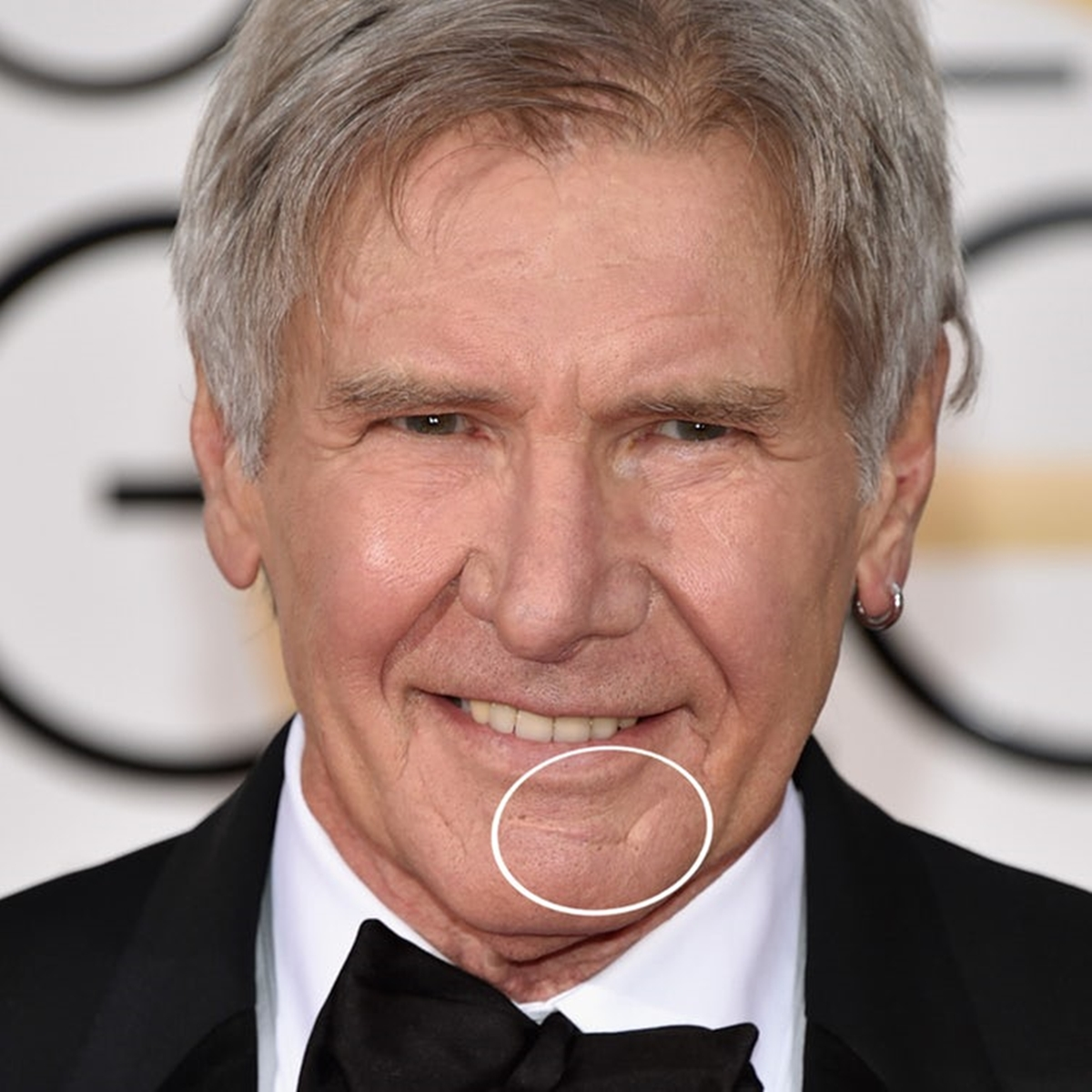 10 5 38 Things You May Not Have Realised About Harrison Ford
