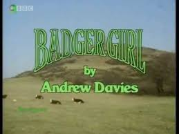 4. Badger Girl 12 Memories Of Primary School Learning From The 1980's