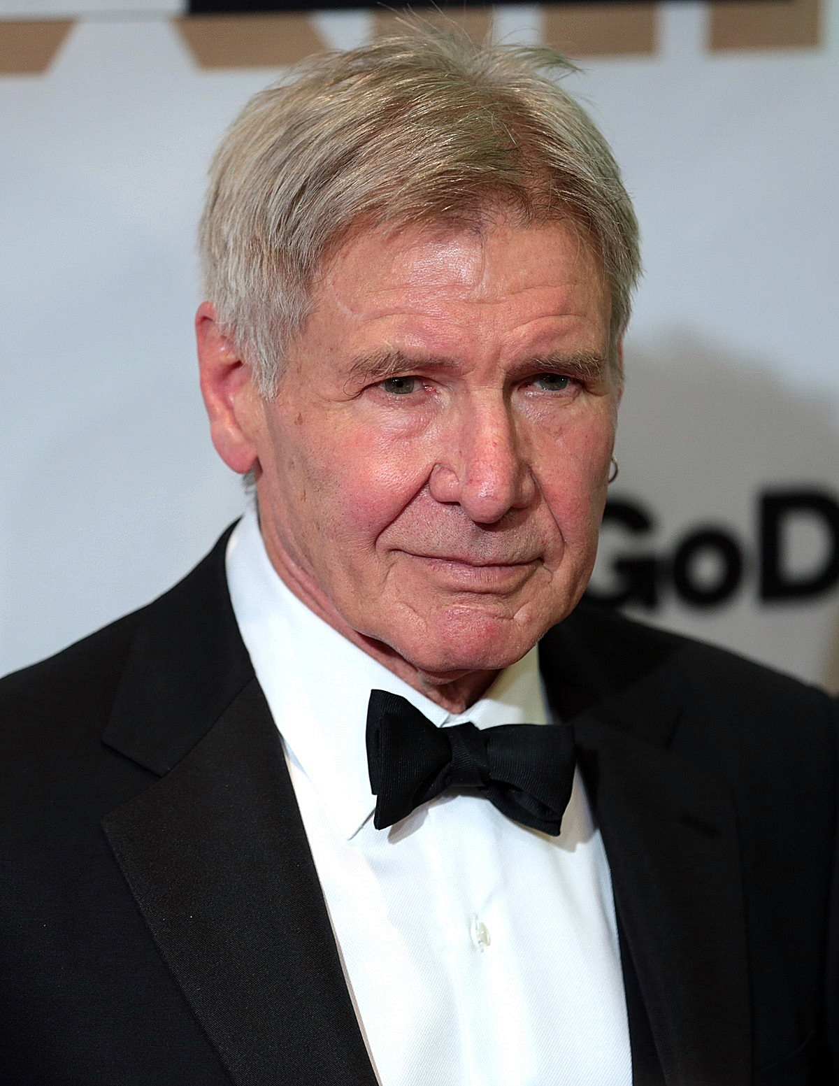 7 4 38 Things You May Not Have Realised About Harrison Ford