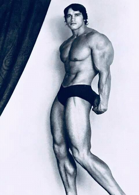 FB IMG 15283988265102257 10 Surprising Facts About Arnold Schwarzenegger
