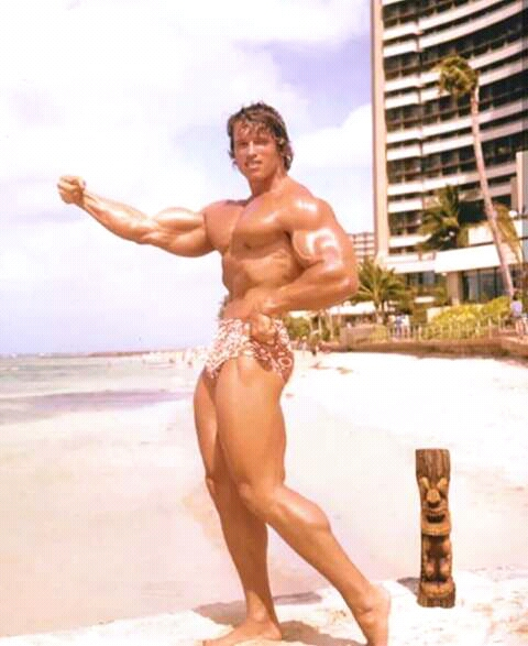 FB IMG 15283988444670813 10 Surprising Facts About Arnold Schwarzenegger