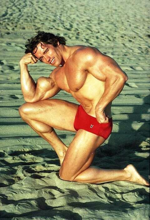 FB IMG 15283989521509635 10 Surprising Facts About Arnold Schwarzenegger