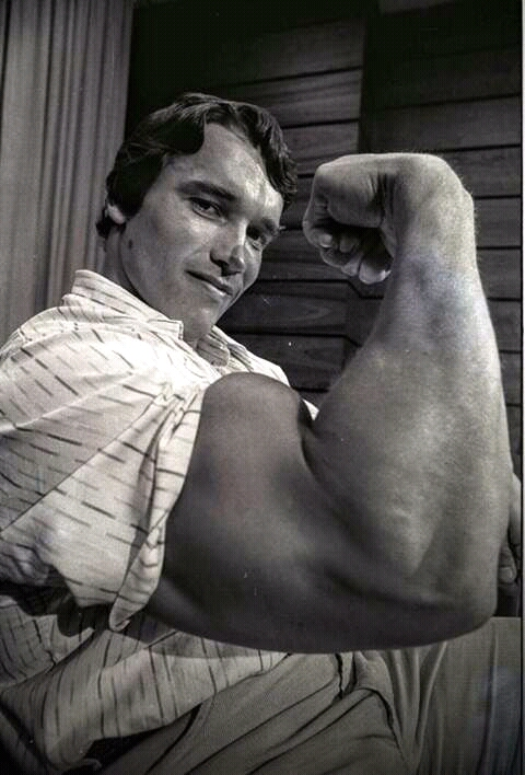 FB IMG 15283989707969346 10 Surprising Facts About Arnold Schwarzenegger