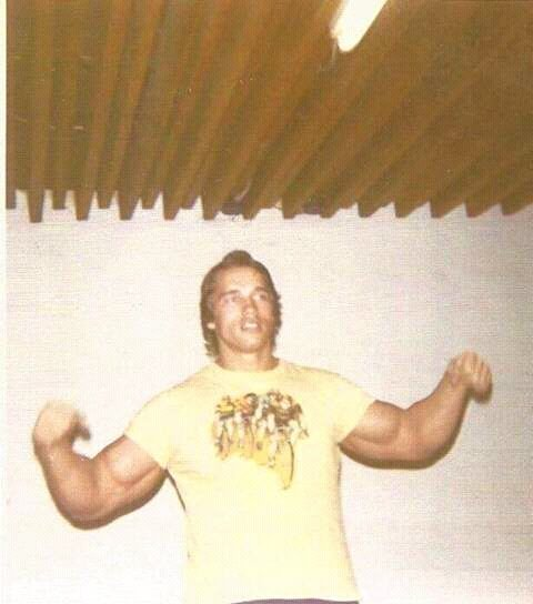 FB IMG 15283990718261065 10 Surprising Facts About Arnold Schwarzenegger