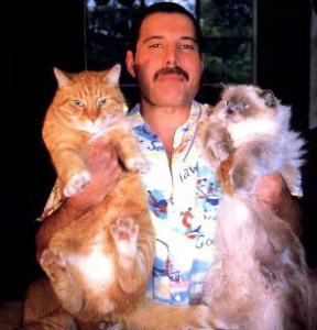 11 30 Things You Didn't Know About Freddie Mercury