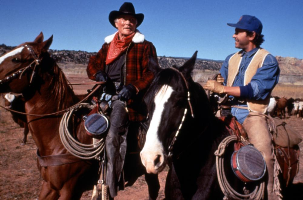 312463 full City Slickers: 10 Facts About The 90s' Wackiest Western