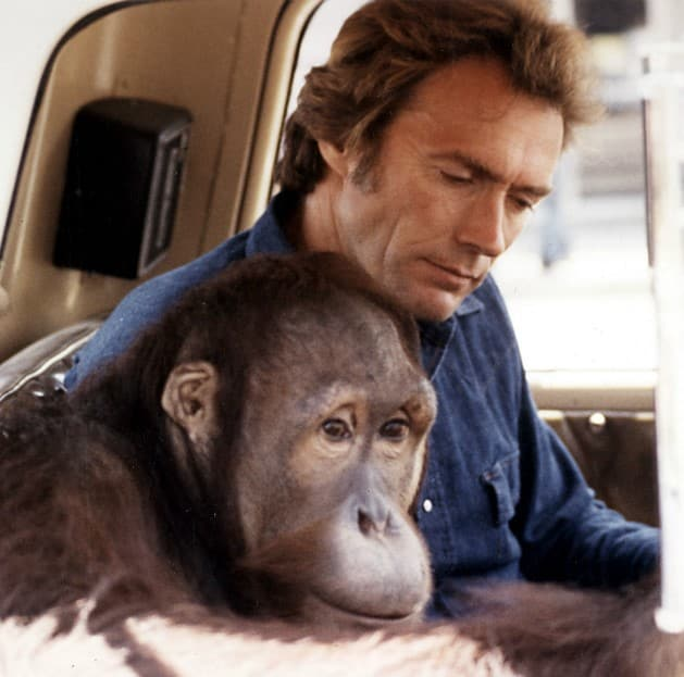 6 49 20 Things You Didn't Know About Clint Eastwood