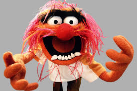 7. Animal 12 Of Your Favourite Muppets