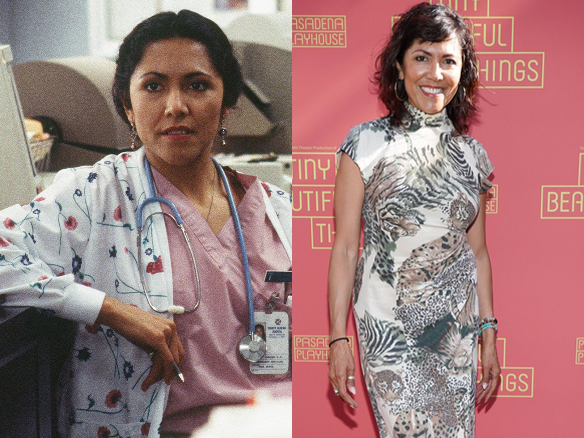 Laura Ceron ER Where Are The Cast Of ER Now?