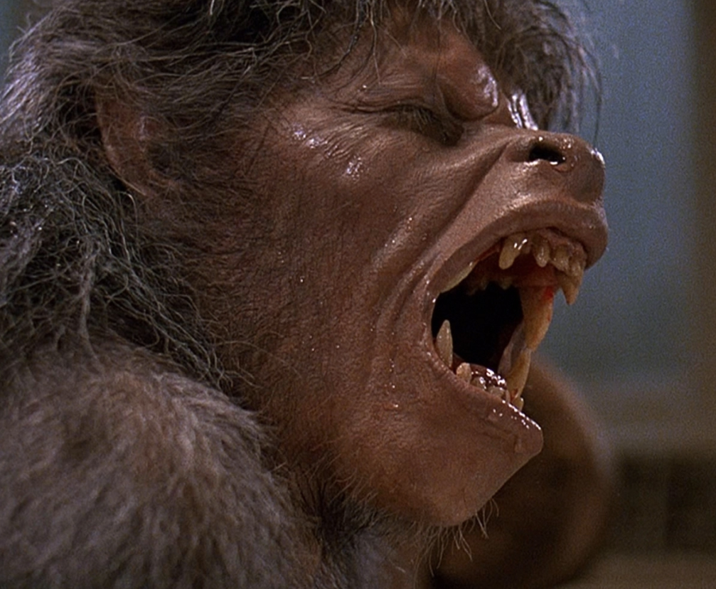 Screenshot 2020 12 17 at 11.49.10 e1608205776259 Here's What Nurse Alex Price From An American Werewolf In London Looks Like Now...