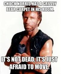 Bear 14 Of The Best Chuck Norris Memes To Make You Smile - Which Is Your Favourite?