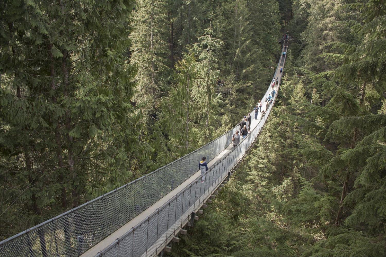 large 10 Of The World's Most Dangerous Bridges