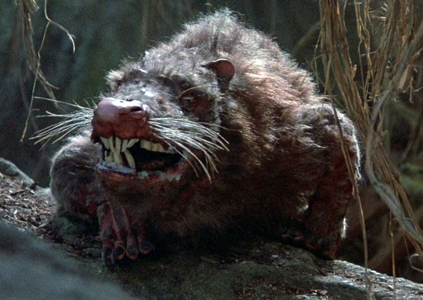 rodents of unusual size e1605174338992 30 Inconceivably Good Facts About The Princess Bride