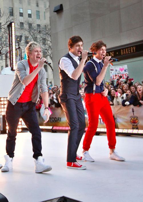 3905684 4x3 10 Things You Didn't Know About One Direction