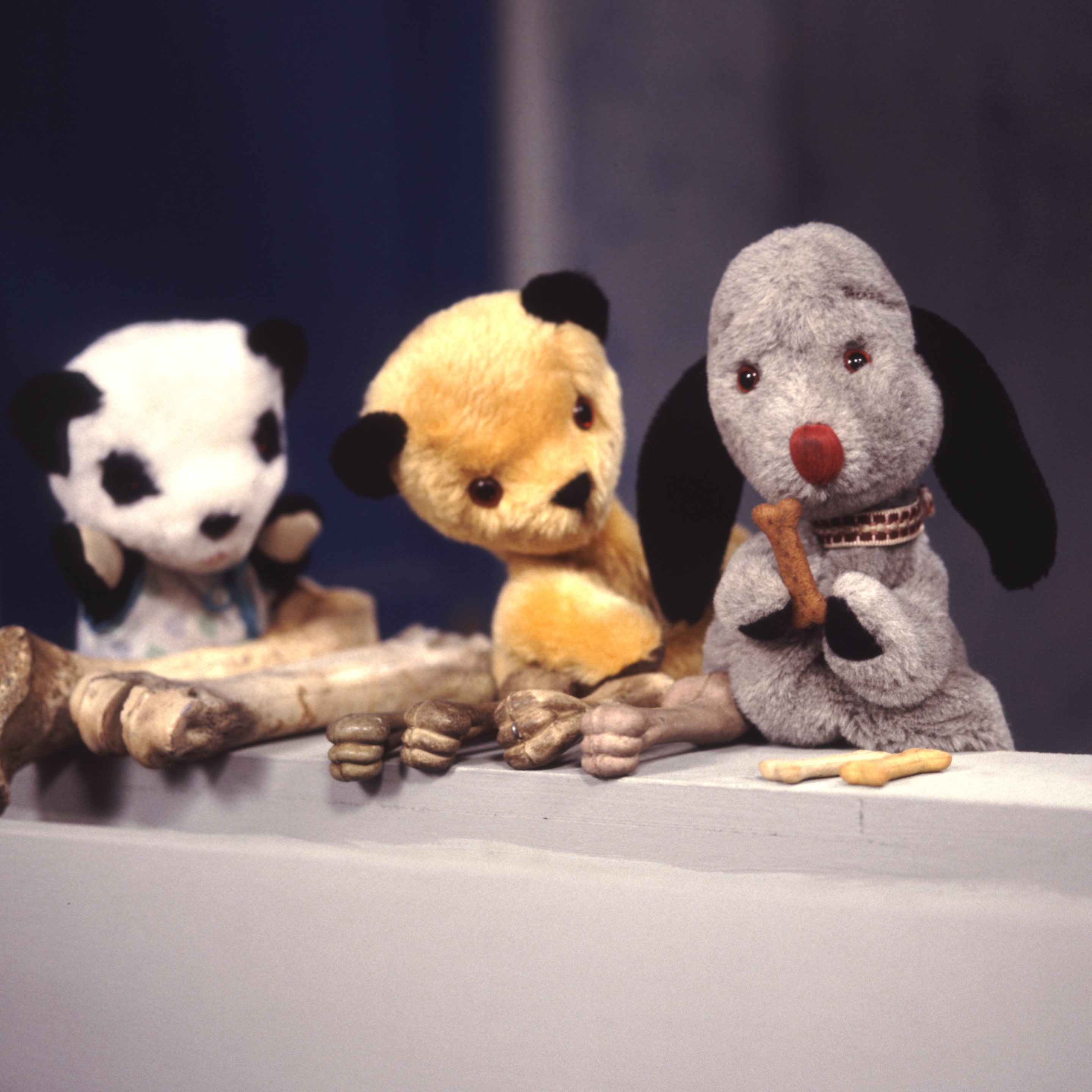 Sooty, Sweep and Soo in The Sooty Show