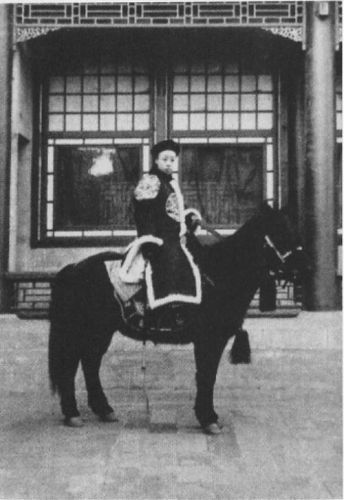 PIC 6 32 13 Facts You May Not Have known About The Last Emperor!
