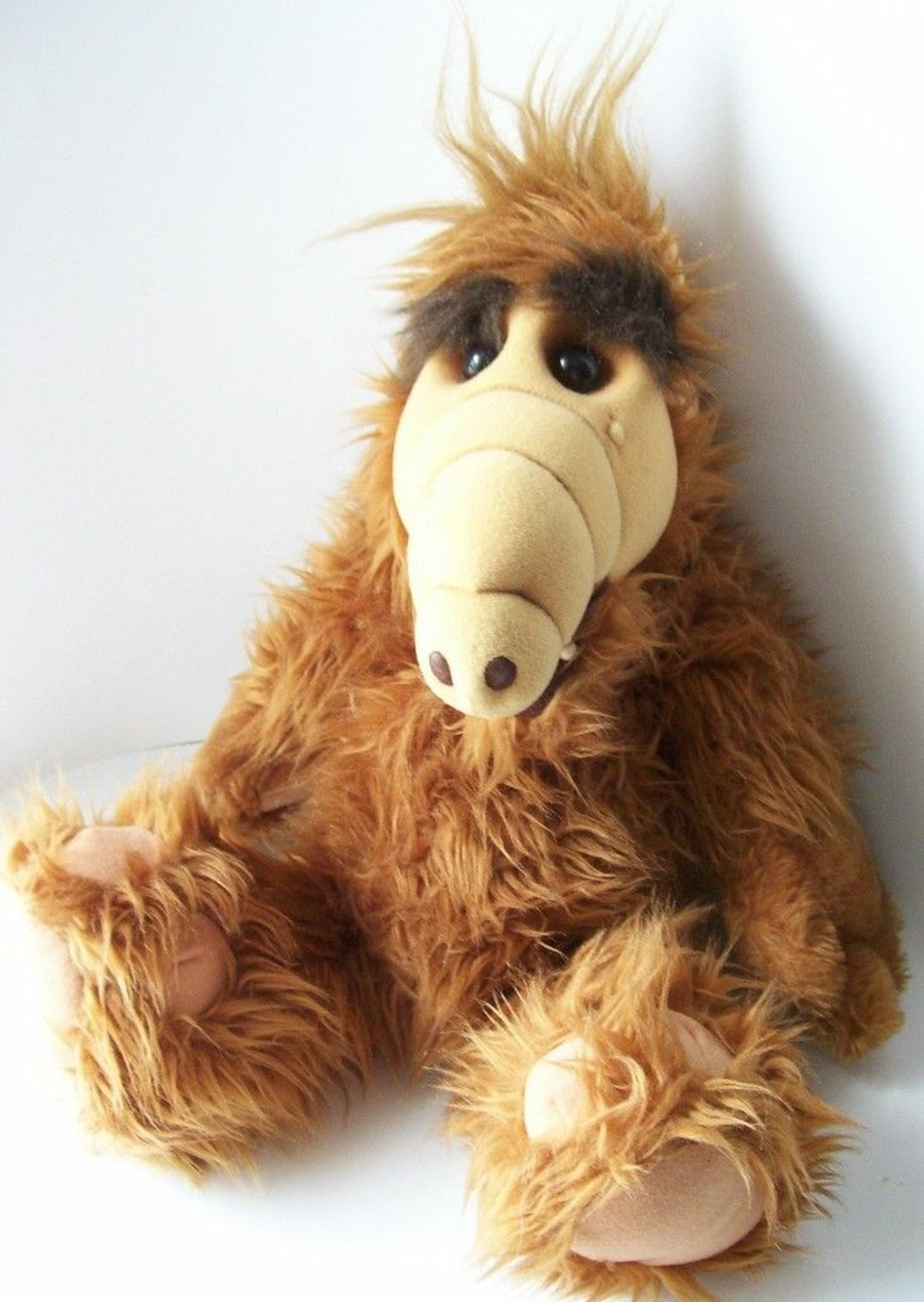1 55 QUIZ: How Many Of These 15 Cuddly Toys Did YOU Own As A Child?