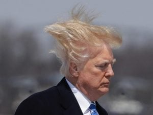 Auctus Digital Flock of Seagulls 3 The Top 10 Worst/Best Men's Hairstyles of the 80s