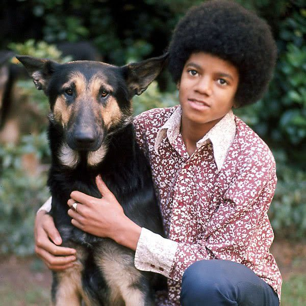 GermanShepherd 20 Things You Didn't Know About Michael Jackson