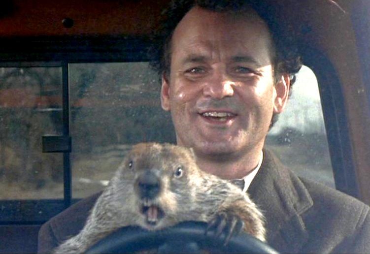 PIC 4 22 10 Things You Never Knew About Bill Murray