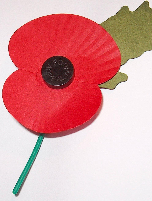 Royal British Legions Paper Poppy white background 20 Craziest Conor McGregor Moments