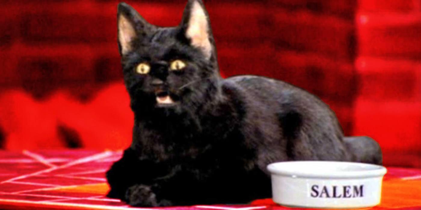 Salem Sabrina Teenage Witch 8 Things You Didn't Know About Sabrina the Teenage Witch