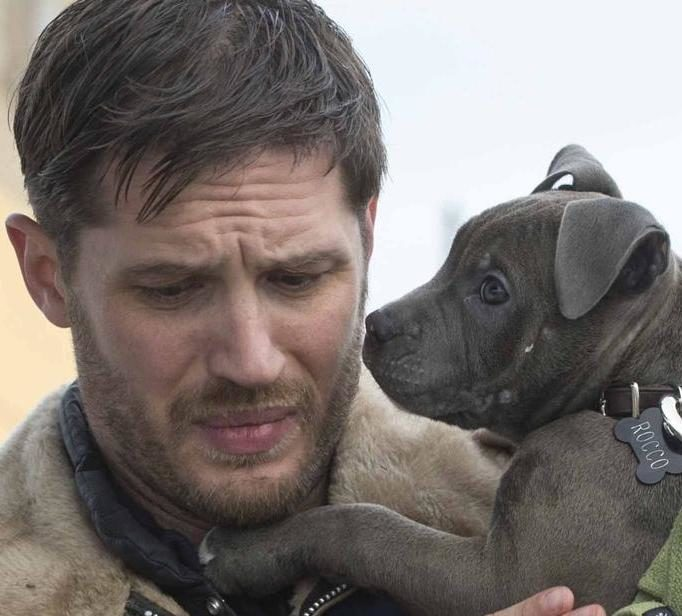 landscape movies the drop tom hardy puppy e1611655443267 40 Things You Didn't Know About Tom Hardy