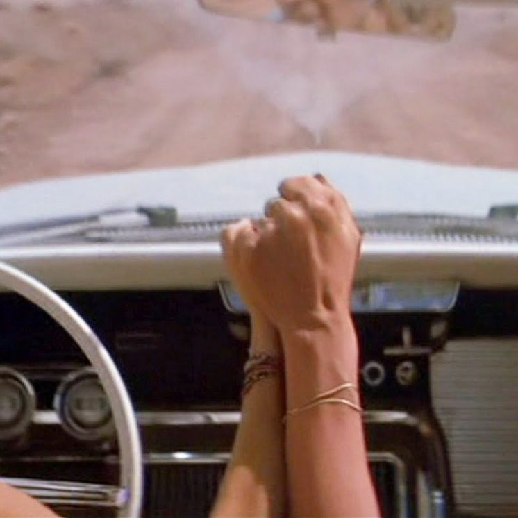 thelmalouise female friends e1603445230582 20 Things You Might Not Have Realised About Thelma & Louise