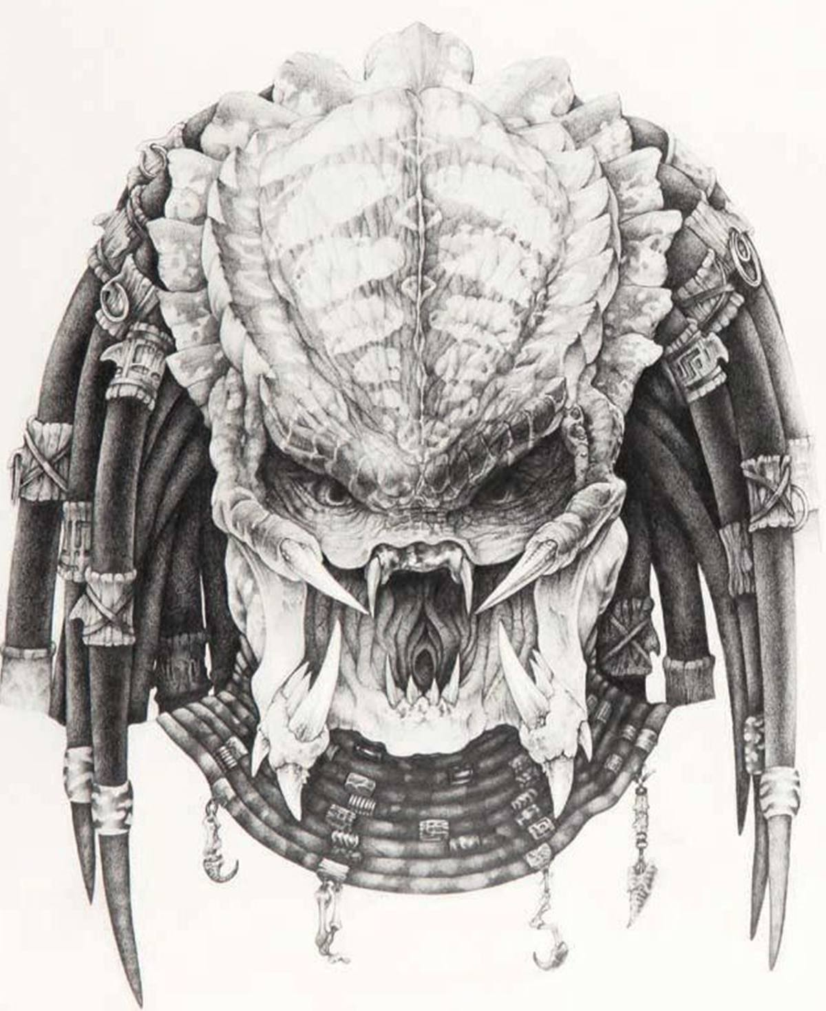 4 12 12 Things You Might Not Have Realised About Predator