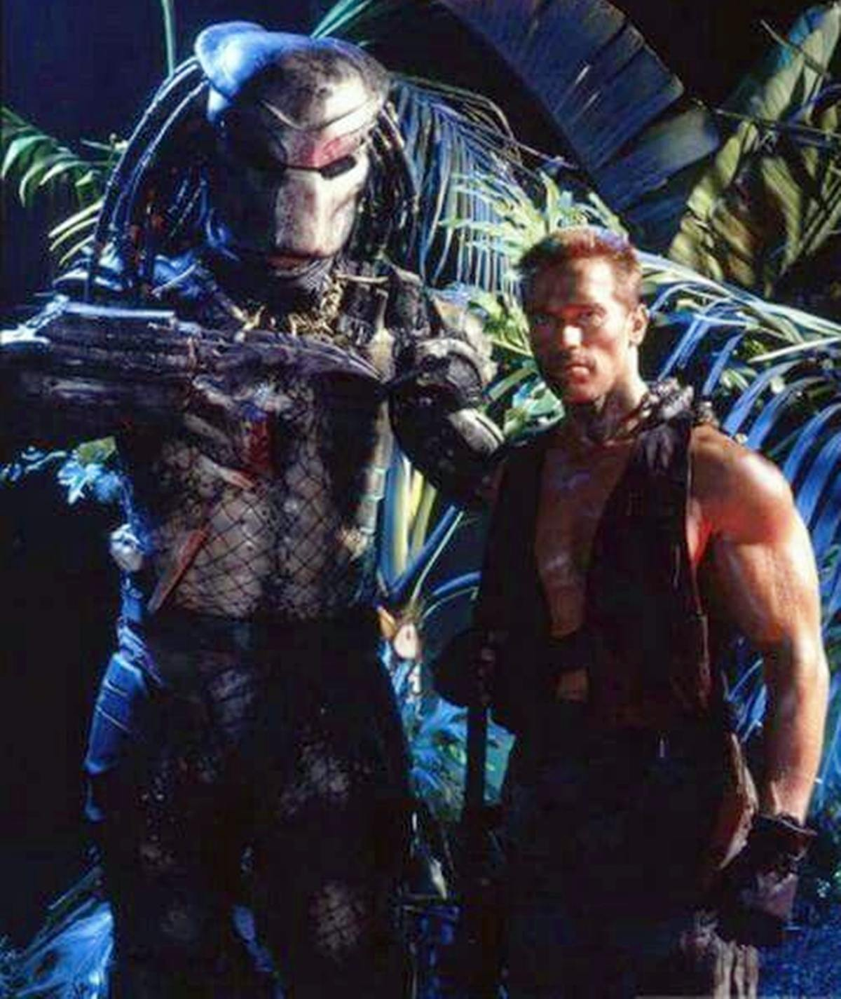 6 12 12 Things You Might Not Have Realised About Predator