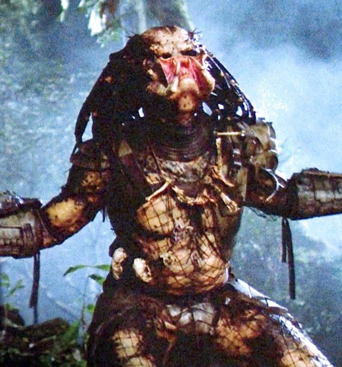 INTRO 2 12 Things You Might Not Have Realised About Predator