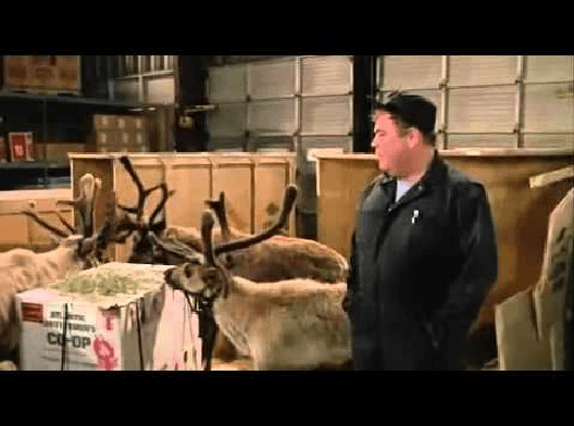 """Ernest Saves Christmas was unusually given a PG rating, when asked why, Jim Varney's response was a strange one, """"Unusual cruelty to reindeer""""!"""