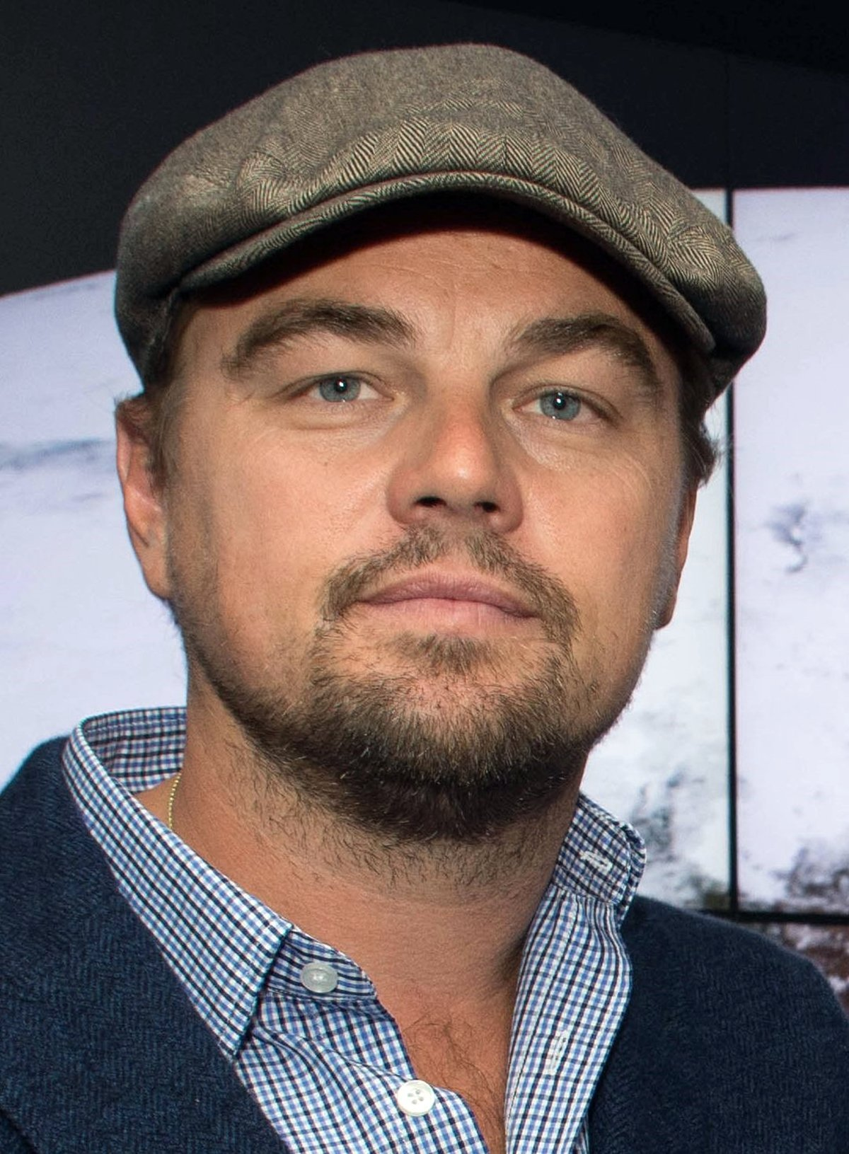 7 13 14 Things You May Not Have Realised About Leonardo DiCaprio