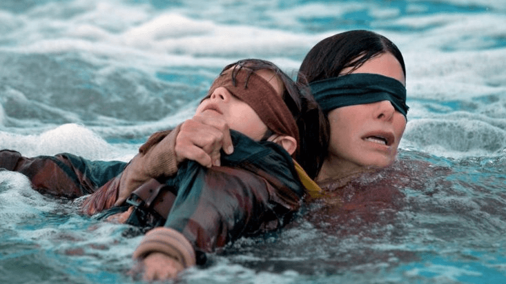 Screenshot 2019 01 07 at 09.59.14 25 Things You Didn't Know About Bird Box