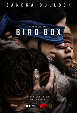 Screenshot 2019 01 07 at 11.09.59 25 Things You Didn't Know About Bird Box