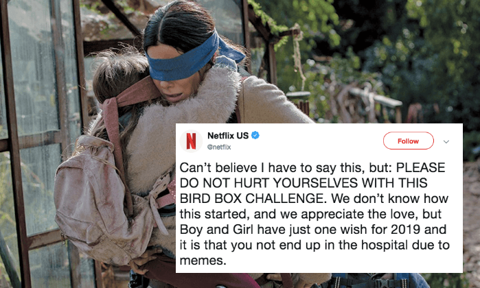 Screenshot 2019 01 08 at 11.00.28 25 Things You Didn't Know About Bird Box
