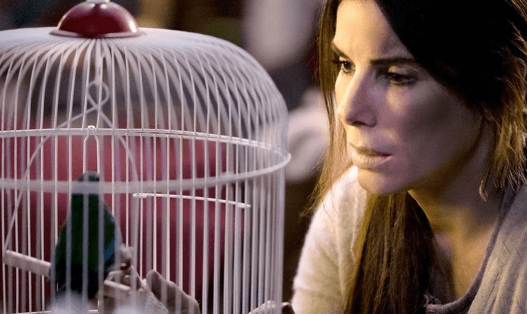 Screenshot 2019 01 08 at 11.01.50 25 Things You Didn't Know About Bird Box