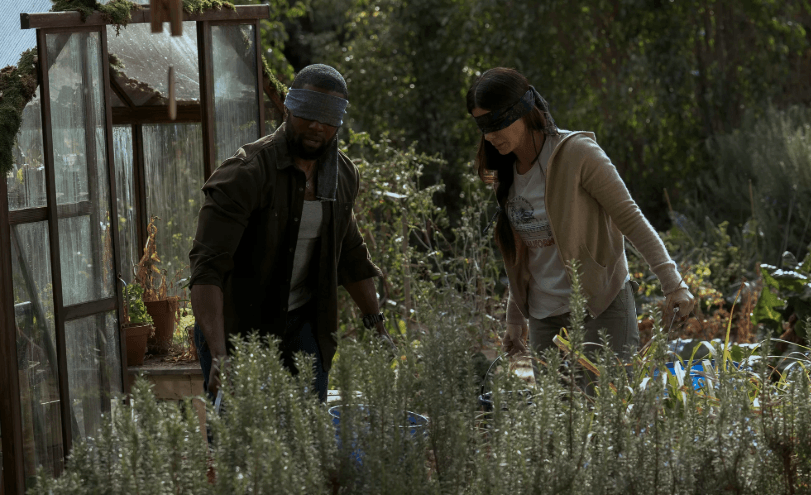 Screenshot 2019 01 09 at 09.28.38 25 Things You Didn't Know About Bird Box